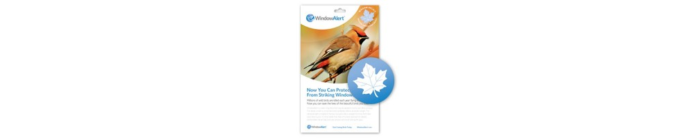 Accesorios aves de jardín