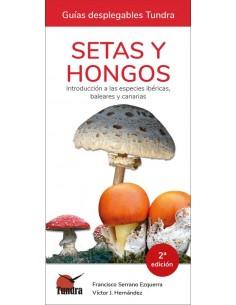 Setas y hongos,...
