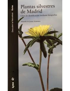 Plantas silvestres de Madrid