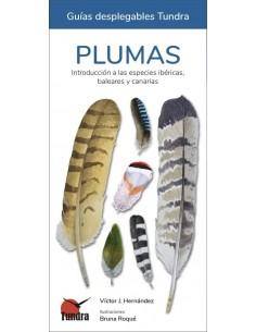 Desplegable plumas